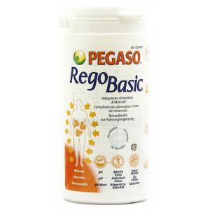 REGOBASIC POLVERE 250 GR - PEGASO